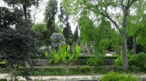 Jardín Botánico de Montpellier