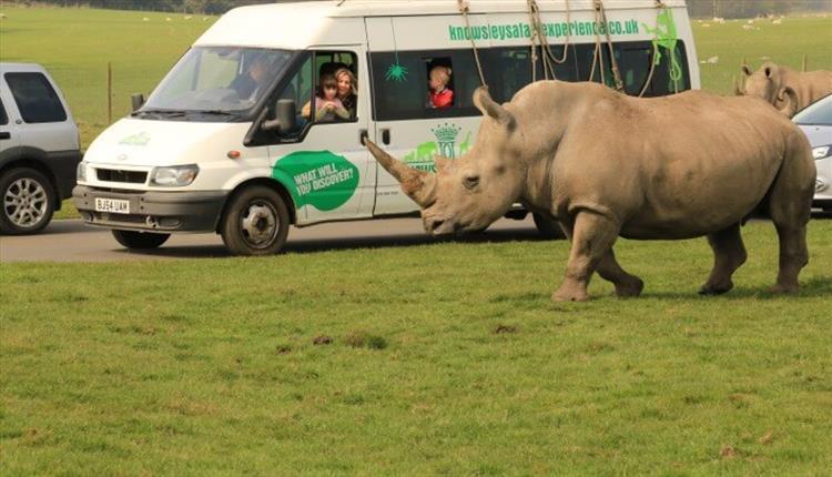 Knowsley Safari Liverpool